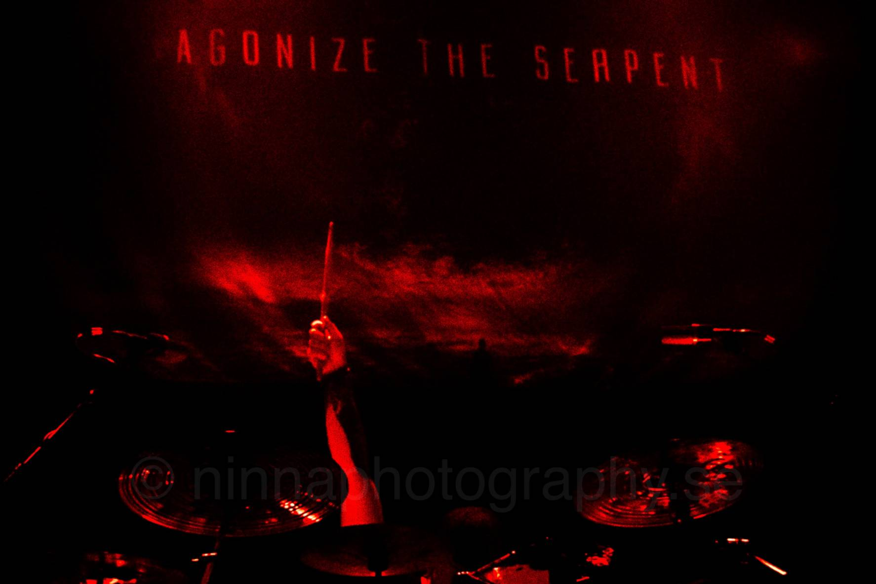 Agonize the Serpent